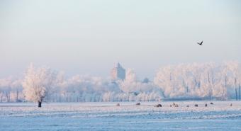 Winter in Vleuten
